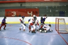 Street & Ball Hockey World Championship 2011 :: IMG_6335