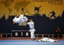Karate :: IMG_7999